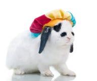 Coniglio sveglio di pasqua in cappello Immagini Stock Libere da Diritti