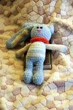 Coniglio tricottato domestico fotografie stock