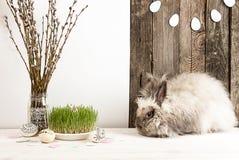 Coniglio, uova di Pasqua, ramo del salice, erba, ghirlanda delle uova di Pasqua Fotografia Stock