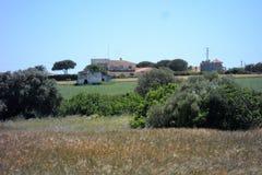 Conil de la Fronter- Cadiz-Spanien Royaltyfri Foto