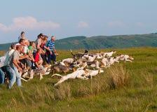 Coniston Hound Trail slip Royalty Free Stock Photos