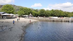 Coniston water Lake District England uk with ducks and tourists Royalty Free Stock Photo