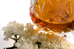Conjak e fiori bianchi Fotografia Stock