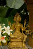 Conjoined golden Buddha deity statues Royalty Free Stock Image