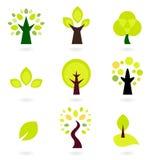 Conjunto abstracto del vector de los árboles Fotografía de archivo libre de regalías