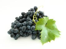 Conjunto azul da uva Fotos de Stock Royalty Free