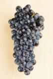 Conjunto azul da uva Foto de Stock Royalty Free