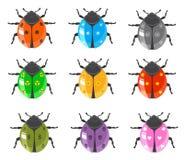 Conjunto brillante del icono del insecto del Ladybug Imagen de archivo