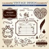 Conjunto caligráfico del ornamento de la vendimia de los elementos Foto de archivo