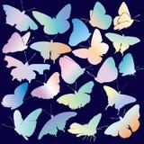 Conjunto coloreado de la silueta de la mariposa Fotos de archivo