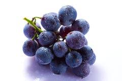 Conjunto da uva fotografia de stock