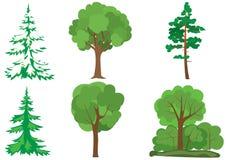 Conjunto de árboles verdes Fotos de archivo libres de regalías