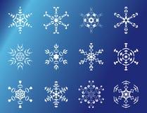 Conjunto de 12 copos de nieve Fotografía de archivo