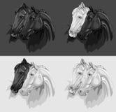 Conjunto de 4 ilustraciones monocromáticas de los caballos Imagen de archivo libre de regalías