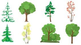 Conjunto de 8 árboles Fotografía de archivo libre de regalías