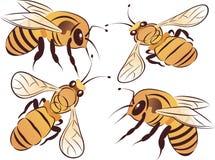 Conjunto de abejas Fotografía de archivo