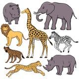 Conjunto de animales africanos Imagen de archivo