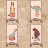 Conjunto de animales de circo Imagen de archivo libre de regalías
