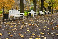 Conjunto de bancos en el parque. Imagen de archivo libre de regalías