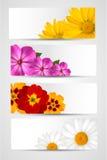 Conjunto de banderas con diversas flores coloridas stock de ilustración