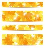 Conjunto de banderas con las hojas de arce. libre illustration