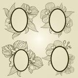 Conjunto de bastidores de la vendimia con las flores - orquídea del vector Foto de archivo libre de regalías