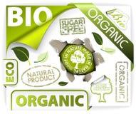 Conjunto de bio, eco, elementos orgánicos Imágenes de archivo libres de regalías