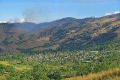 Conjunto de bure do Fijian no vale de Navala, uma vila nas montanhas dos vagabundos de Viti central do norte Levu, Fiji fotografia de stock royalty free
