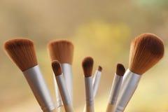 Conjunto de cepillos profesionales del maquillaje Foto de archivo libre de regalías
