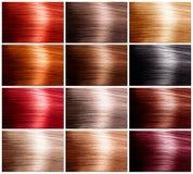 Conjunto de colores del pelo fotos de archivo