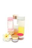 Conjunto de cosméticos femeninos fotos de archivo libres de regalías