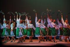 Conjunto de dança Foto de Stock