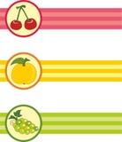 Conjunto de direcciones de la Internet con las frutas Fotografía de archivo