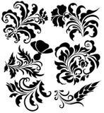 Conjunto de diseños florales ilustración del vector
