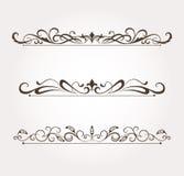Conjunto de elementos caligráficos del diseño floral Imágenes de archivo libres de regalías