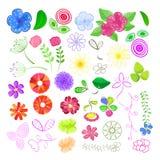 Conjunto de elementos de la flor Fotos de archivo