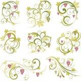 Conjunto de elementos del diseño de las uvas de vino Fotografía de archivo libre de regalías