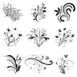 Conjunto de elementos del diseño floral Imágenes de archivo libres de regalías