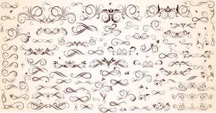 Conjunto de elementos del diseño floral Imagen de archivo libre de regalías