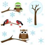 Conjunto de elementos del invierno Foto de archivo libre de regalías