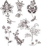 Conjunto de elementos floral de la decoración Fotos de archivo