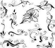 Conjunto de elementos florales stock de ilustración