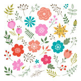 Conjunto de elementos florales Fotografía de archivo libre de regalías