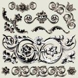 Conjunto de elementos florales clásicos de la decoración ilustración del vector