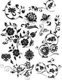 Conjunto de elementos florales del diseño Fotos de archivo