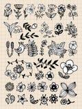 Conjunto de elementos negros del diseño de la flor Fotos de archivo