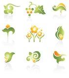 Conjunto de elementos verdes del diseño Foto de archivo