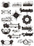 Conjunto de elementos y de manojos florales Imágenes de archivo libres de regalías