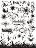 Conjunto de elementos y de manojos florales Fotos de archivo libres de regalías