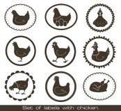 Conjunto de escrituras de la etiqueta con el pollo. Fotografía de archivo